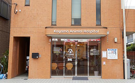 話を聞くことからはじまる診察、心に寄り添う動物病院を目指して