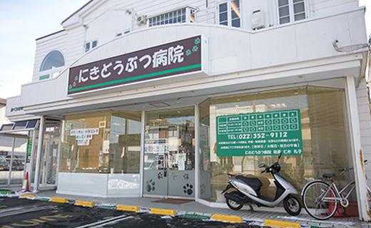 仙台のホームドクター、女性獣医師だからできる親しみやすい診察