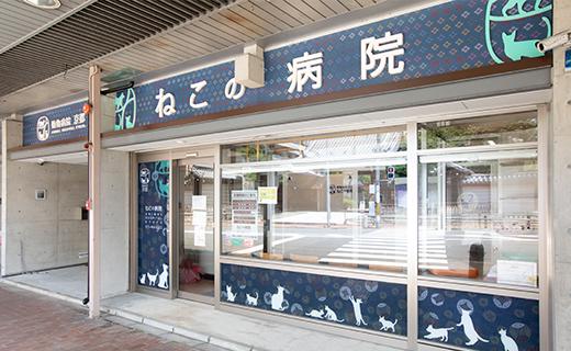 すべての猫の幸せのために、京都ではじめての猫専門病院