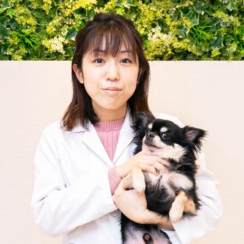 口の中のしこり~ネコの口腔内腫瘍、扁平上皮癌の治療~